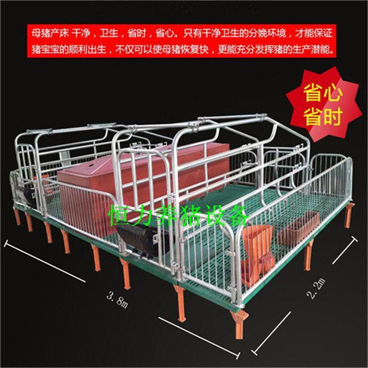 江苏宿迁养猪设备欧式双栏母猪产床生产厂家恒力机械(在线咨询)