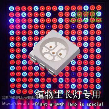 Smd5050红光贴片LED灯珠 0.2W 5050红光 660nm 665nm红光规格书