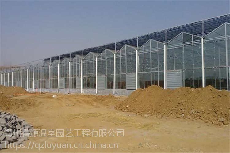山东滨州生态玻璃温室大棚湿地公园6米、空间大1万平方型建造报价