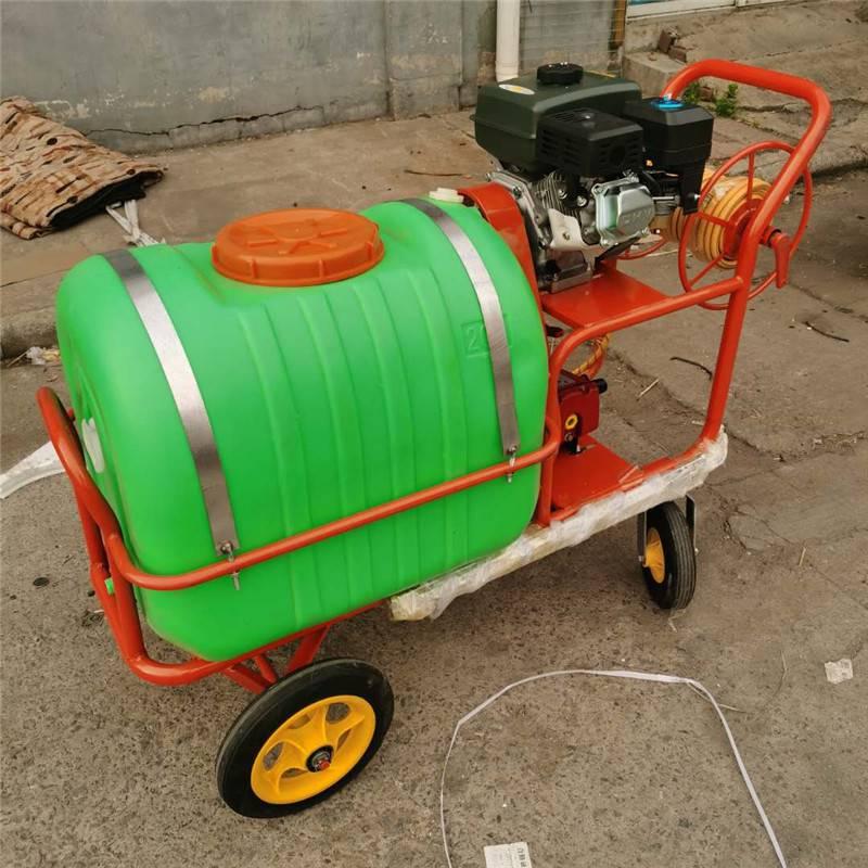农场打药机自走式 除尘杀虫打药机 启航手推四轮喷药机