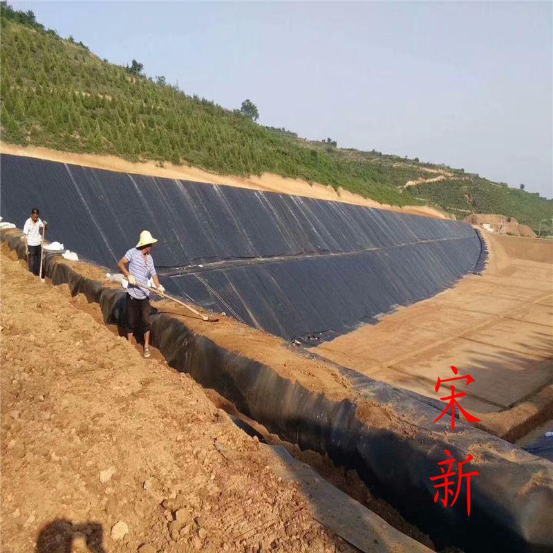 垃圾填埋场覆盖1.0mmHDPE土工膜 山东厂家报价