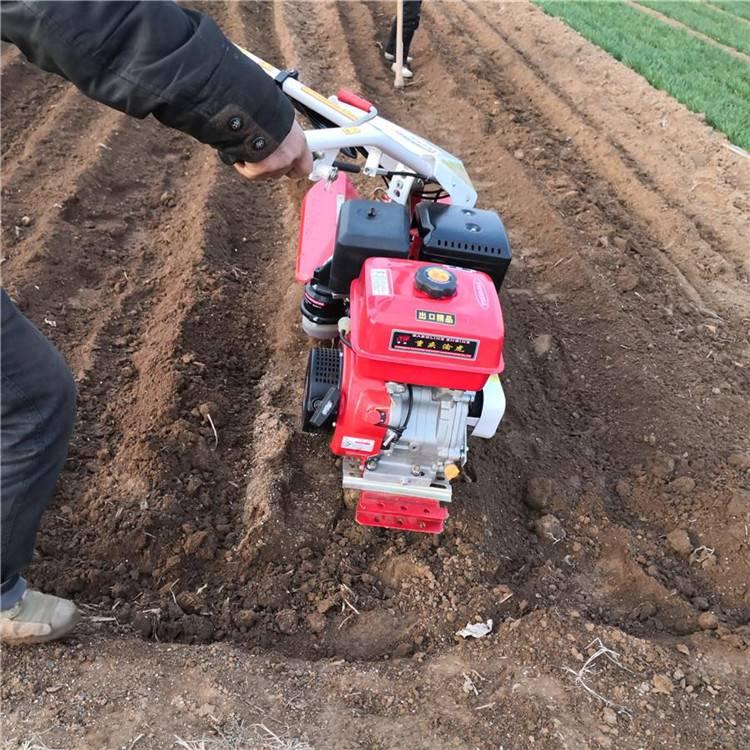 单排自走式开沟机 风冷柴油开沟机 生姜种植挖沟机