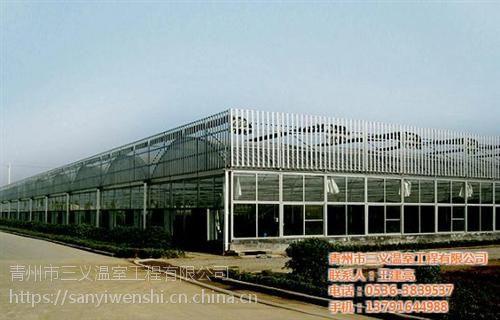 连栋温室厂家,连栋温室,三义温室工程(在线咨询)