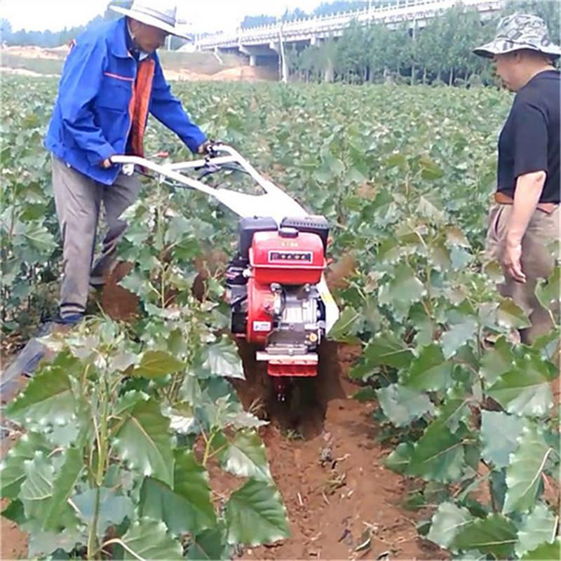 水仙种植培土机 施肥作畦手扶开沟机 多功能开沟机厂家