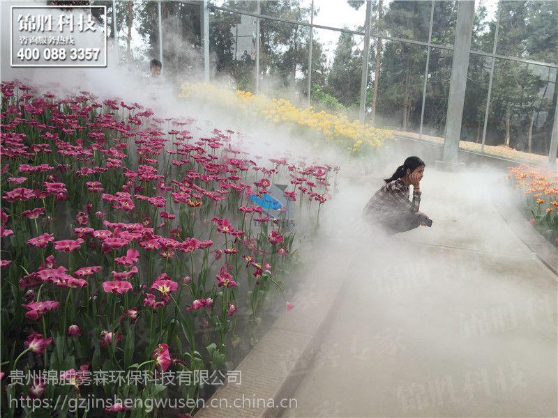 人造雾加湿,花园人造雾造景加湿驱虫,喷雾冷雾景观,锦胜雾森系统