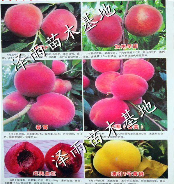 http://himg.china.cn/0/4_237_237918_598_632.jpg