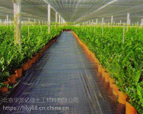 北京防草布厂家价格低质量优