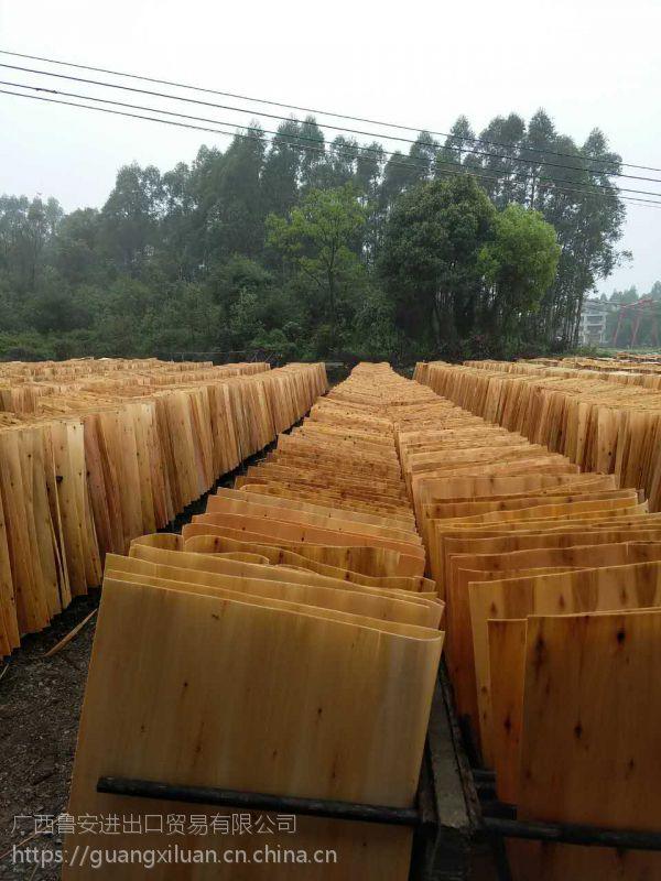广西鲁安常年提供各种规格的桉木单板、