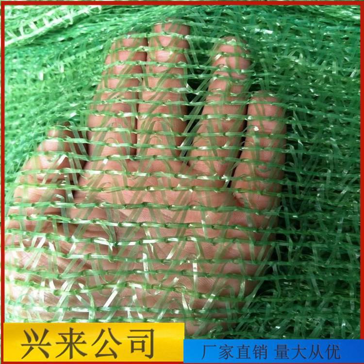 工地门口防尘网 南宁绿色防尘网 2针盖土网生产基地