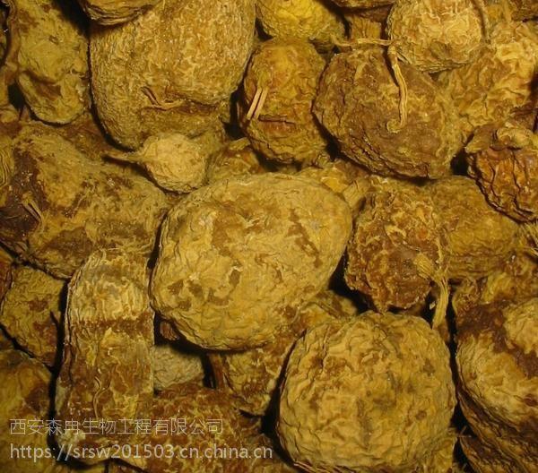 森冉生物金果榄提取物/青牛胆提取物/九牛胆提取物
