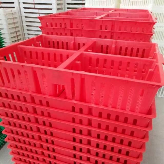 厂家批发鸡苗筐塑料小鸡周转筐雏鸡筐 雏鸡运输筐