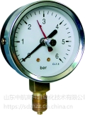 YTFJ-100,记忆型压力表,北京布莱迪BLD,山东威海仪器仪表
