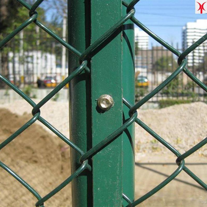 围网球场围网孔雀养殖网