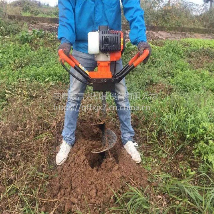 山地种树挖孔机 富兴牌苗木种植打眼机 轻便式挖窝机厂家