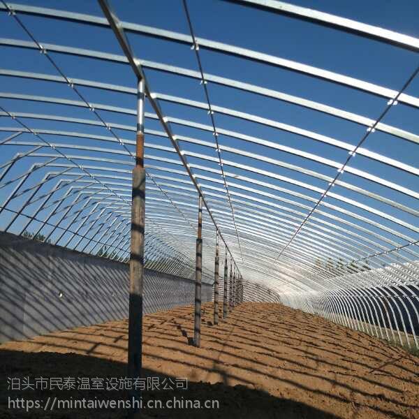 种植蔬菜大棚实用耐用有50几字钢 70几字钢骨架
