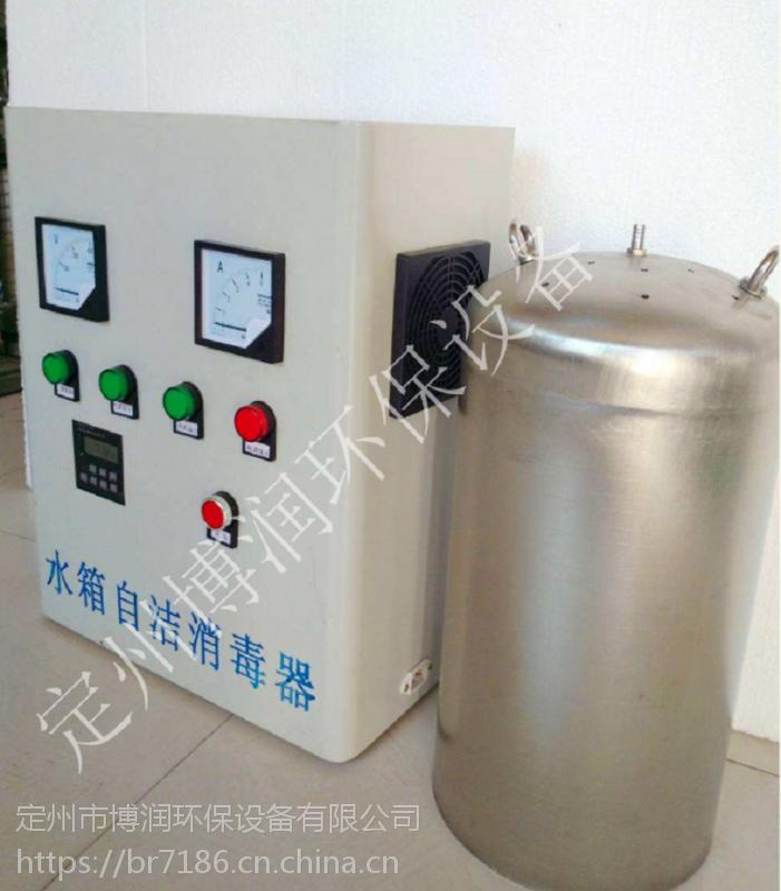 水池专用臭氧发生器WTS-2A