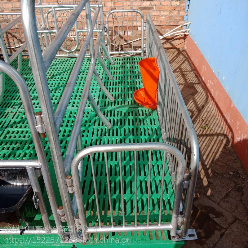 万晟畜牧设备厂定制高质量双体母猪产床