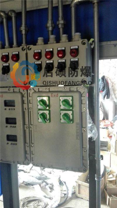 粉尘气体车间防爆配电箱