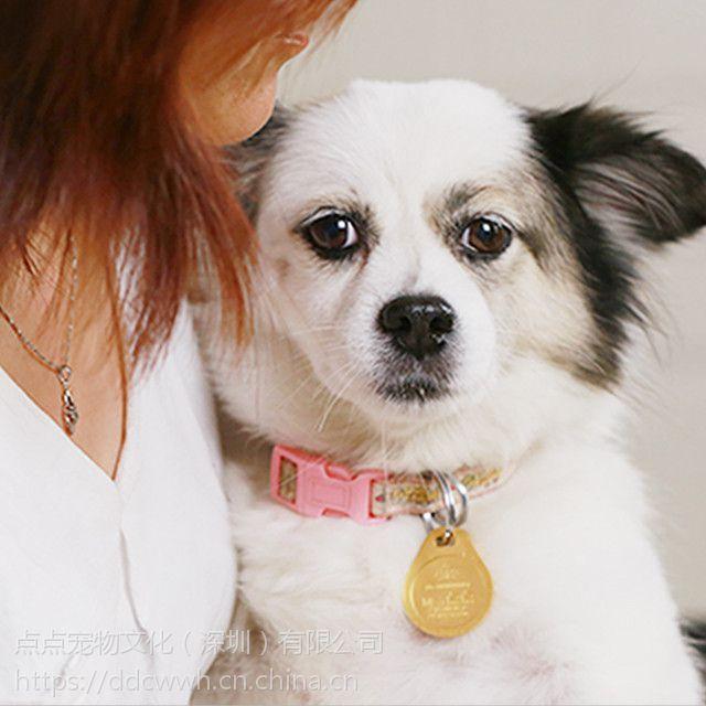点点宠物文化(为您的爱宠免费订制宠物身份证-狗牌)