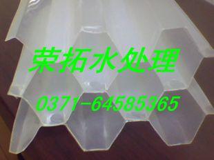 http://himg.china.cn/0/4_250_236708_310_232.jpg