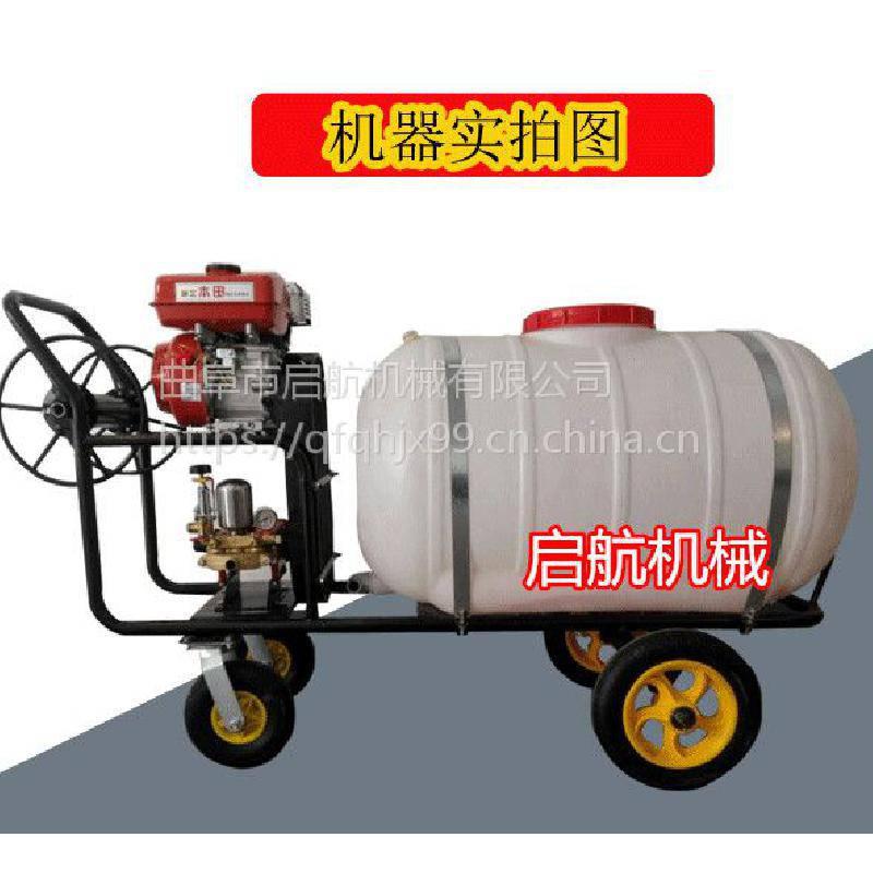 自走式三轮打药机 高压喷雾器 高压远程手推式打药机厂家