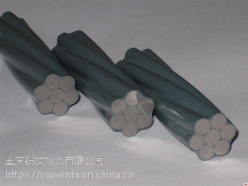 重庆稳发钢绞线(查看),酉阳钢制承载体