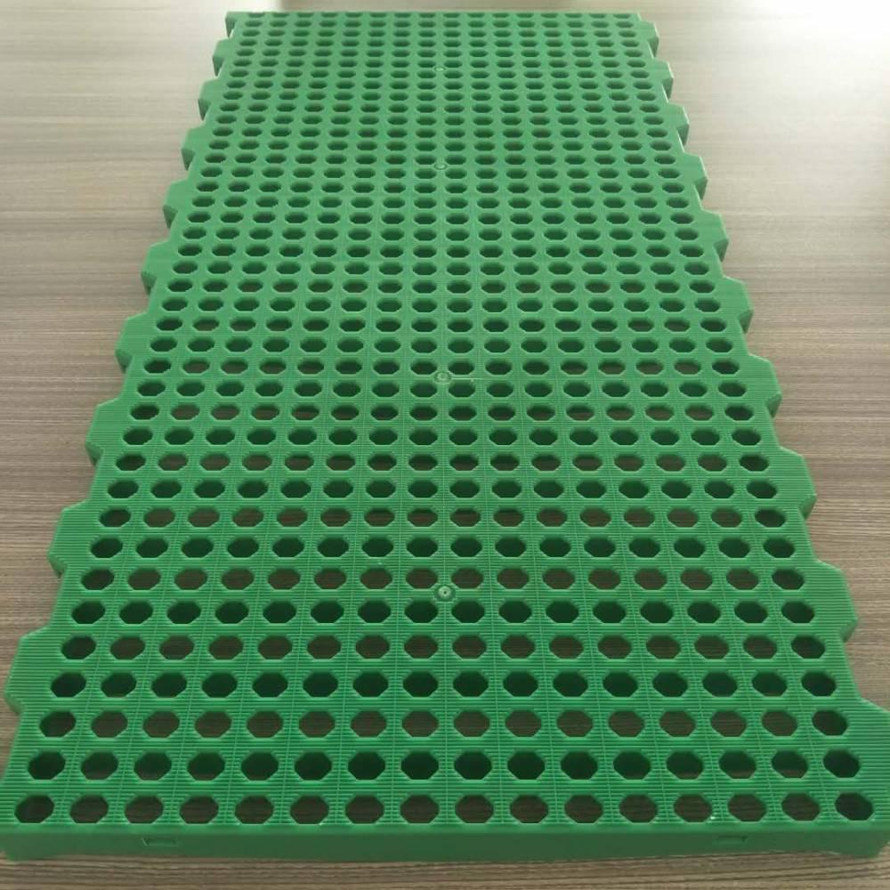 羊舍漏粪板 羊舍塑料漏粪板 塑料羊床
