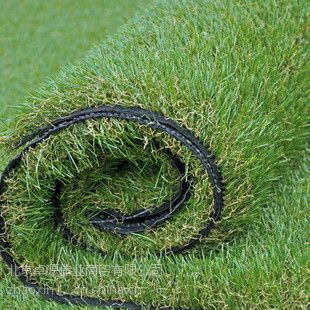 北京绿化仿真草坪出售厂家