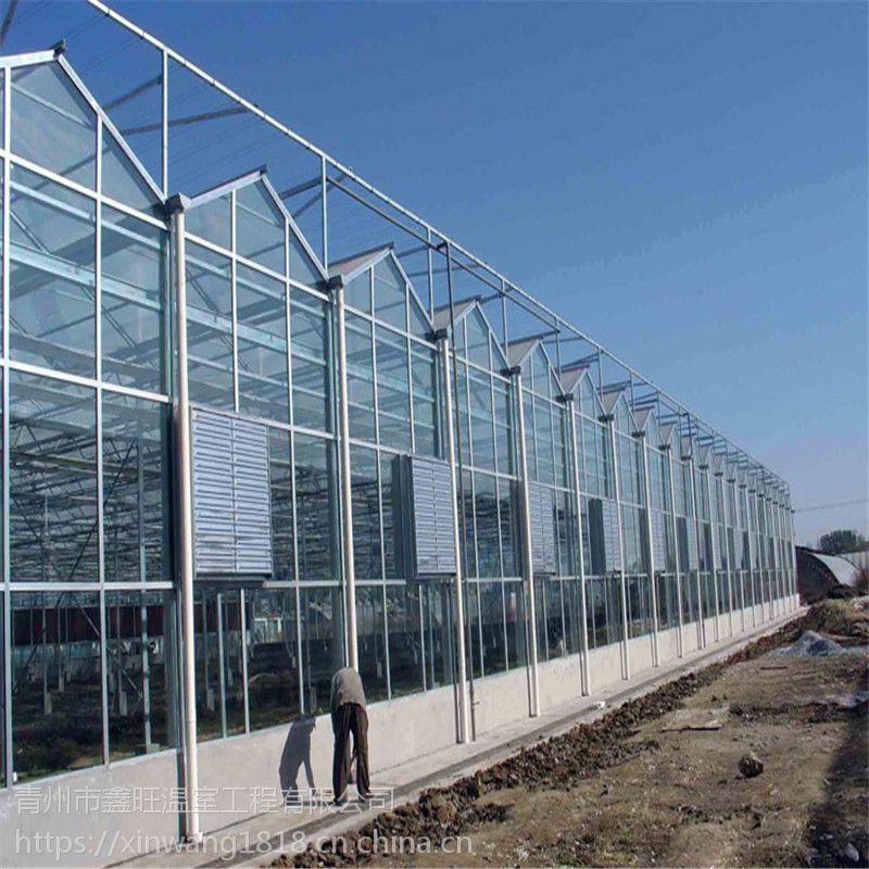 山东阳光板温室大棚建设工程