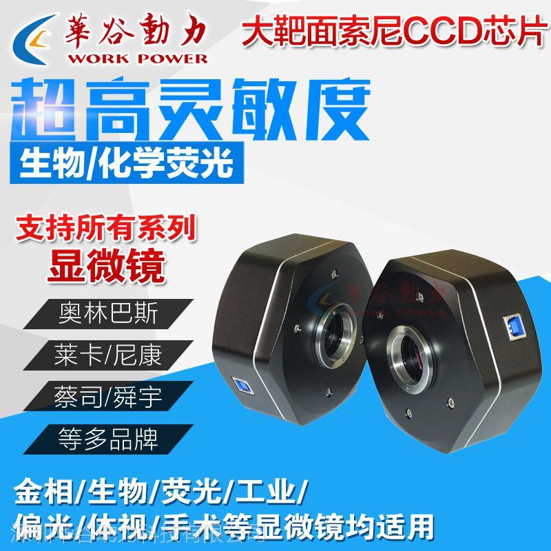 华谷动力WP-MC500 USB2.0高清显微镜相机 显微镜摄像头 500万像素