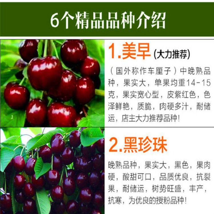 http://himg.china.cn/0/4_276_236496_750_750.jpg