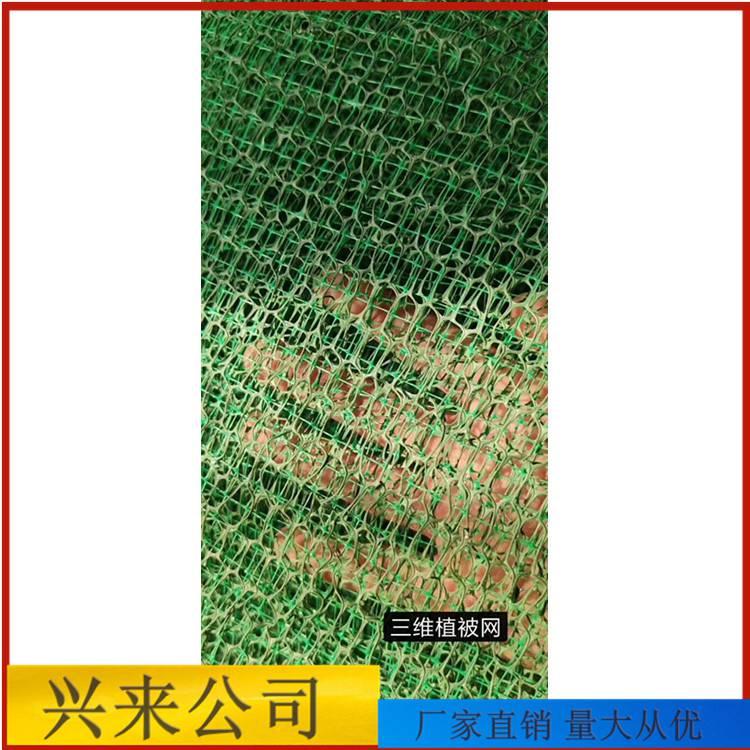 临沂绿色防尘网 工地防尘网厚度 浙江台州盖土网电话