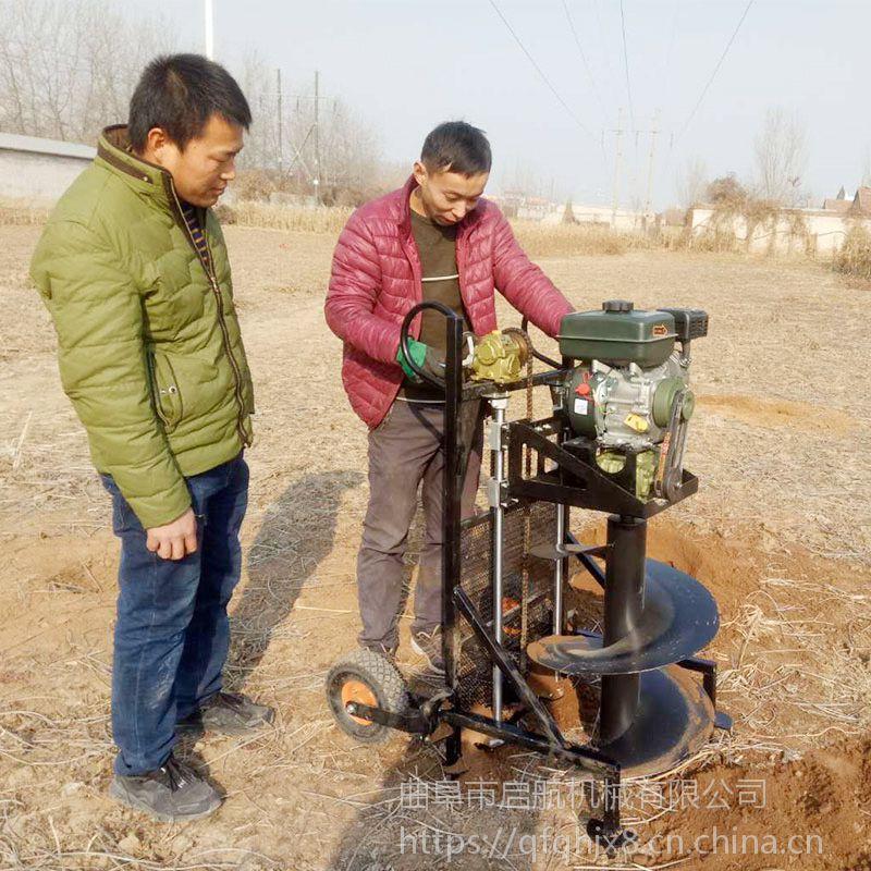 大棚埋杆钻土机 启航新款果树施肥打坑机 栽树挖坑机厂家