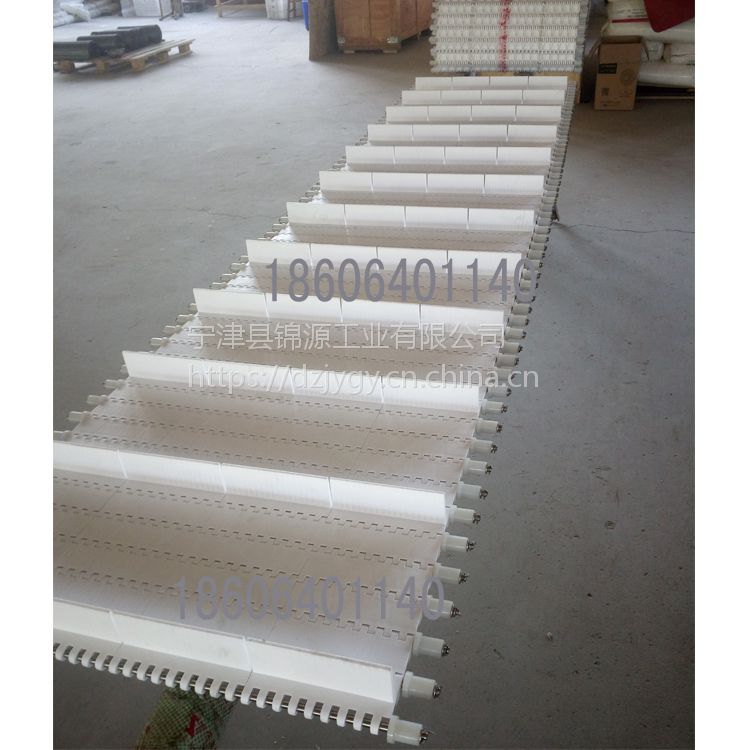 OPB塑料模块输送带理瓶机流水线果蔬加工网带挡边输送带厂家直销