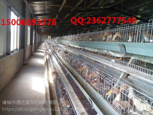 盛众机械蛋鸭笼厂家批发零售 蛋鸭笼养视频