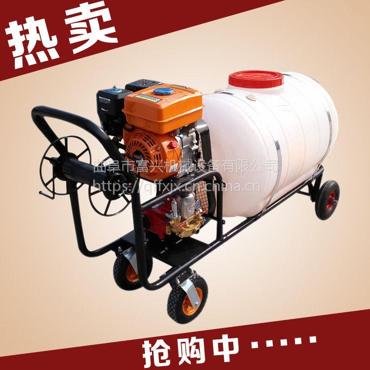 富兴葡萄专用打药机厂家 车载式打药机 大棚喷雾器
