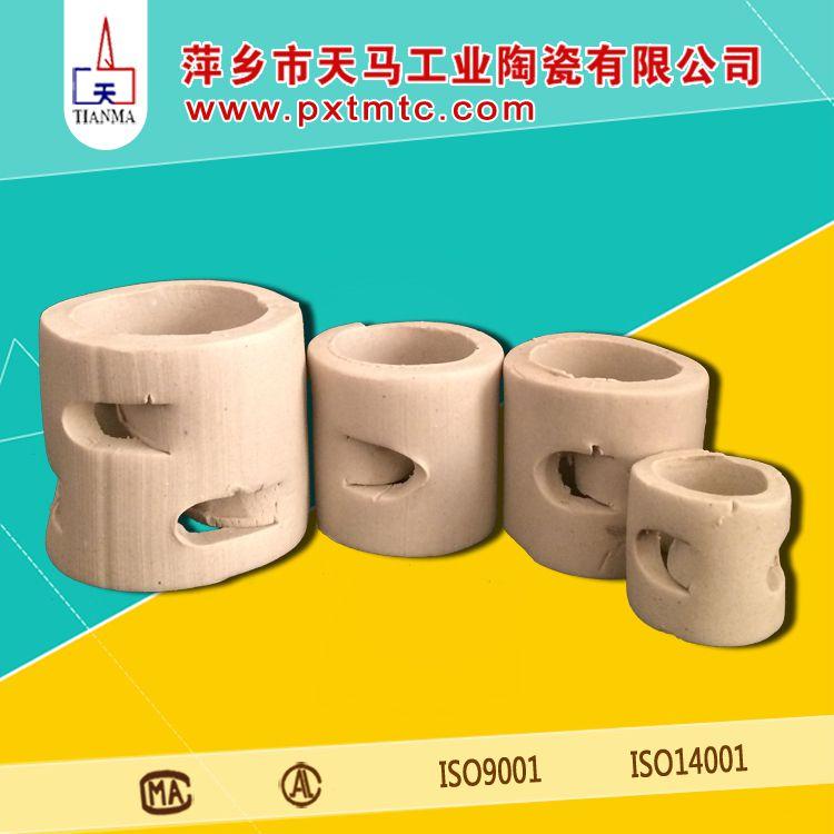 厂家直销优质陶瓷填料 陶瓷鲍尔环填料