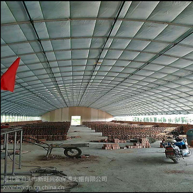 新旺兴农保温大棚8308圆拱蔬菜种植大棚