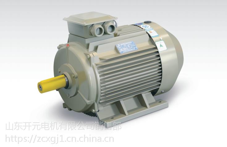 供应山东开元电机公司 三相异步电动IP23 6303-8高效节能电机028296