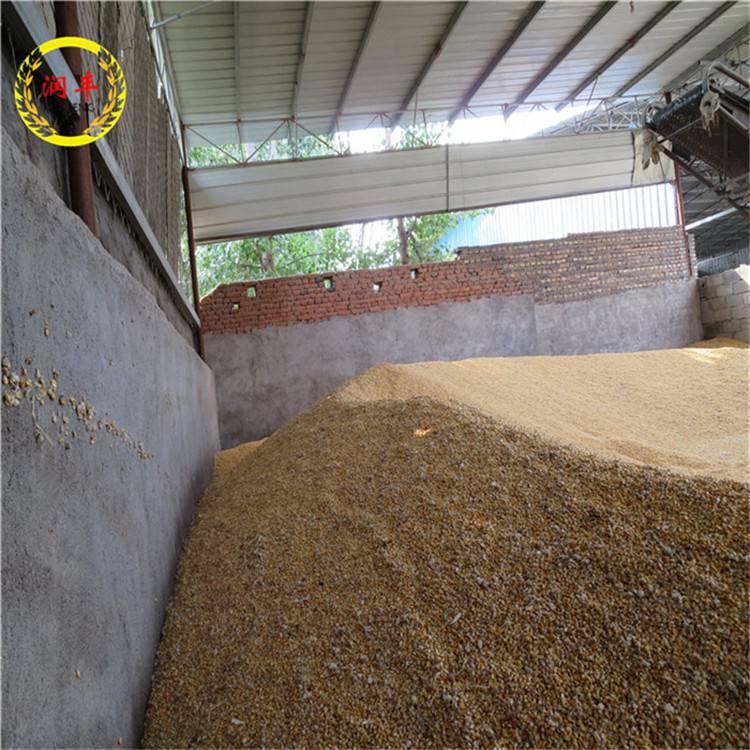 小型抽粮设备 吸粮机使用效果 润丰 上粮机厂家