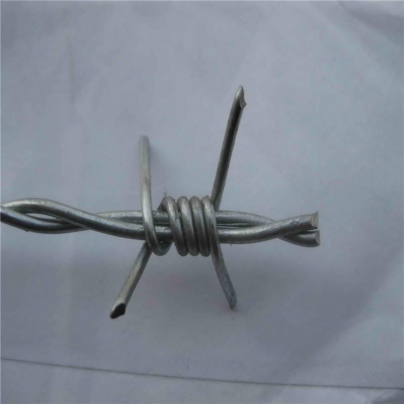 电镀刺绳厂家 刺绳护栏 钢丝刺网