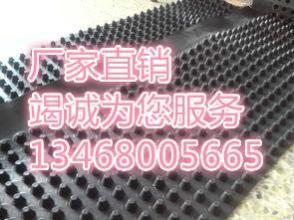 http://himg.china.cn/0/4_296_239108_294_220.jpg