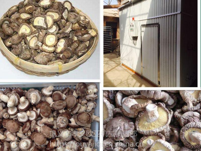 河北黑木耳香菇烘干系统 JC-6型自动恒温欧亚机械