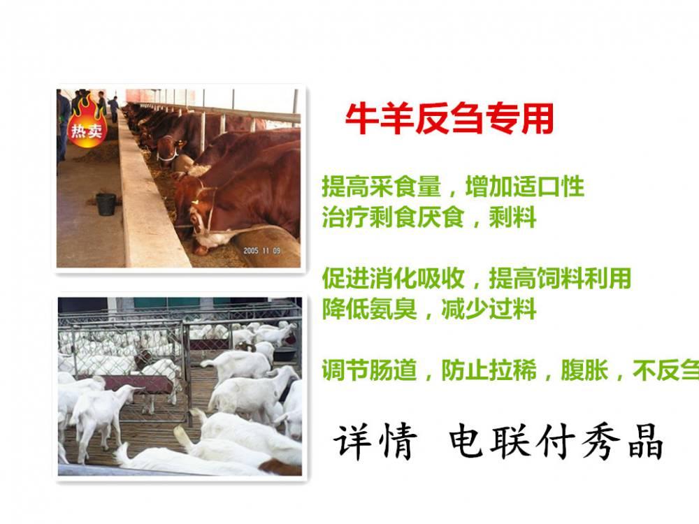 傻吃肥保治疗羊剩料提高采食量三天见效