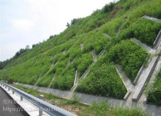 山东宏祥三维植被网绿化护坡厂家直销