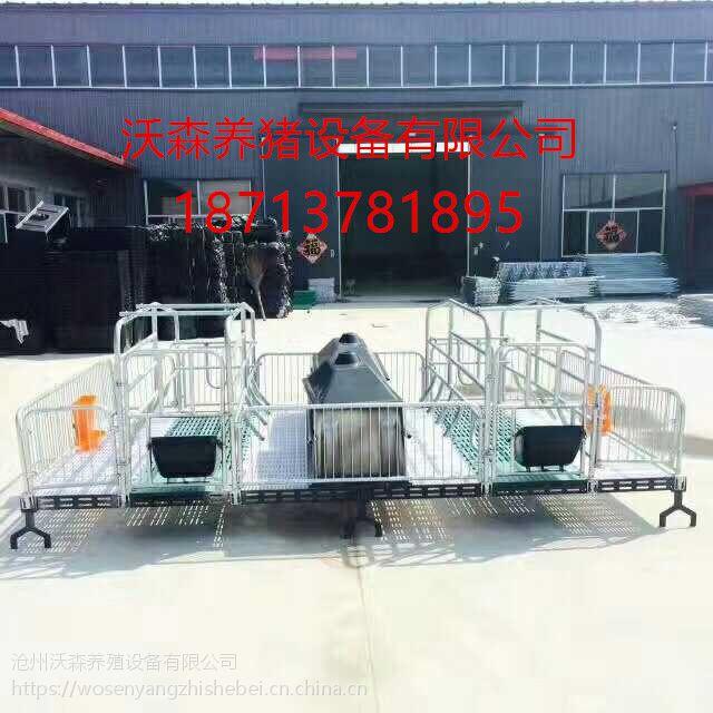 沃森养猪设备 双猪位母猪产床加工定制坚固耐用