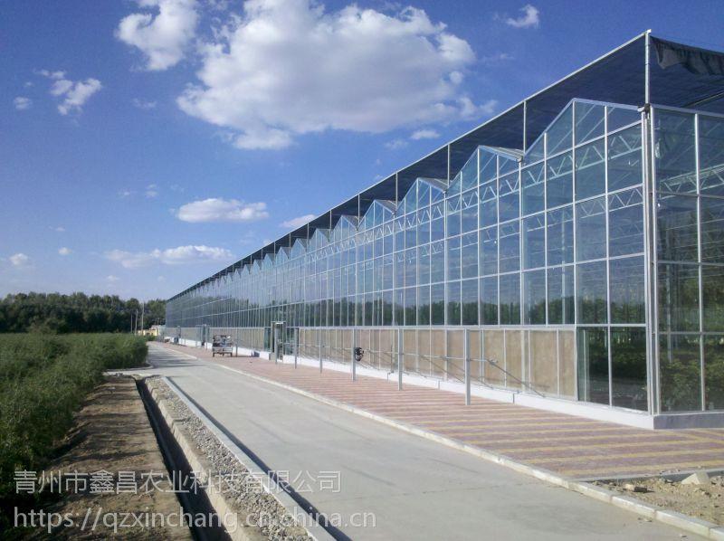 内蒙乌海大型旅游型玻璃温室阳光房3万平方、高抗风立柱型工程价格