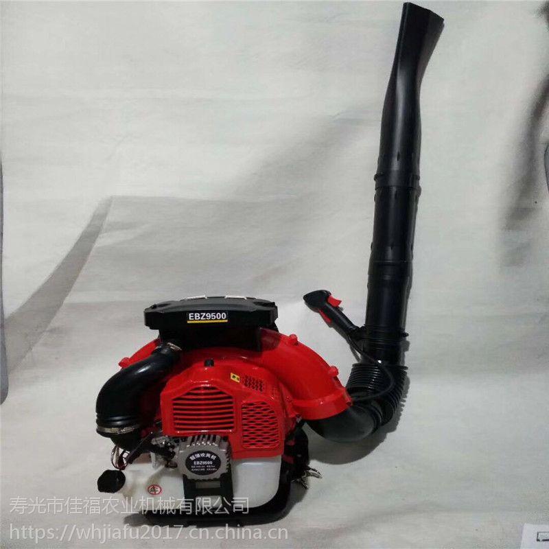 吹大风量背负式吹雪机 低耗油吹雪机 吹雪机图片
