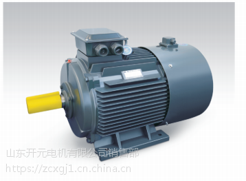 供应山东开元电机有限公司 三相异步电动机 YE2802-4 02845