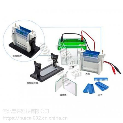 嘉兴型垂直电泳槽 JY-SCZ2+型垂直电泳槽JY-SCZ2+量大从优